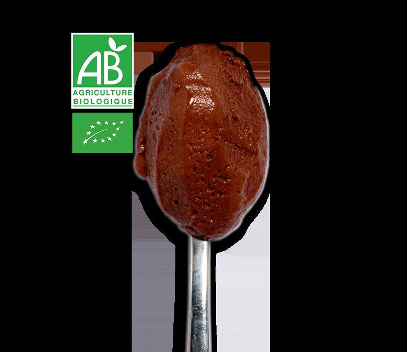 Glace Chocolat Noir Bio